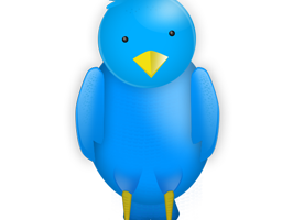 The Twitter Stream